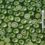 Ptx 943000-13 Canvas limoenen groen