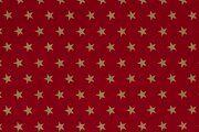 NB 12704-015 Kerst katoen ster groot rood/goud
