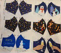 Ptx 410032-061 Mondkapjes paneel kerst multi - Ptx 410032-061 Mondkapjes paneel kerst multi