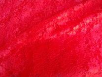 Kant rood B8 - Kant rood B8
