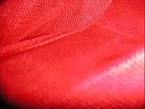 NB 4972-015 Tule rood - NB 4972-015 Tule rood