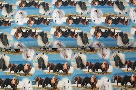 French Terry stof - Stenzo20/21 16544 French Terry digitaal paarden