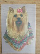 Applikationen - Full color Applikation Hund mit Poncho