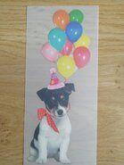 Stoffen uitverkoop - Fulle color applicatie hond met ballonnen